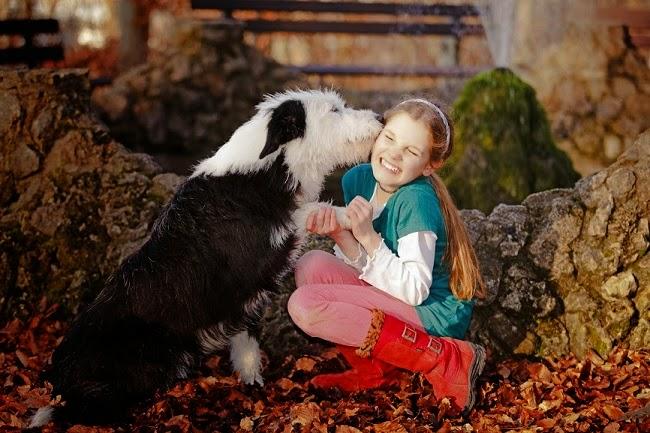 Opieka nad psem mieszkającym na dworze