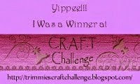 Winner CRAFT challenge