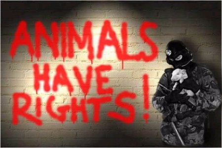 ANIMALS HAVE RIGHTS!!!
