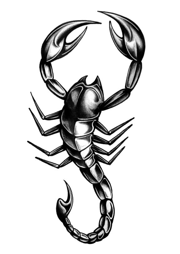 Tatouage Scorpion signe astrologique et symbolique du