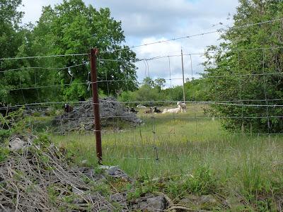 ル・バラル Le Barral の集落