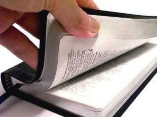 Estude a Santa Palavra de Deus Agora Mesmo!