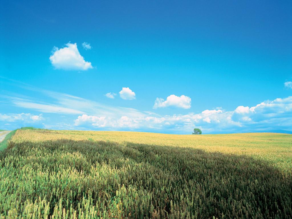 http://2.bp.blogspot.com/-9H_7JxNs1lo/TfZ1tIc1Y6I/AAAAAAAAEdM/fEf-MmX80F4/s1600/desktop-wallpaper-of-korea-landscape-6-1024x768.jpg