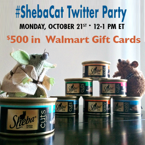 #ShebaCat #shop #cbias