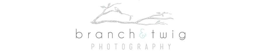 Branch & Twig Photography | BLOG