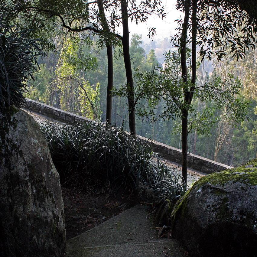 Caminho com degraus em cimento, ladeado por enormes pedras de granito e rodeado por plantas ornamentais e vegetação diversa