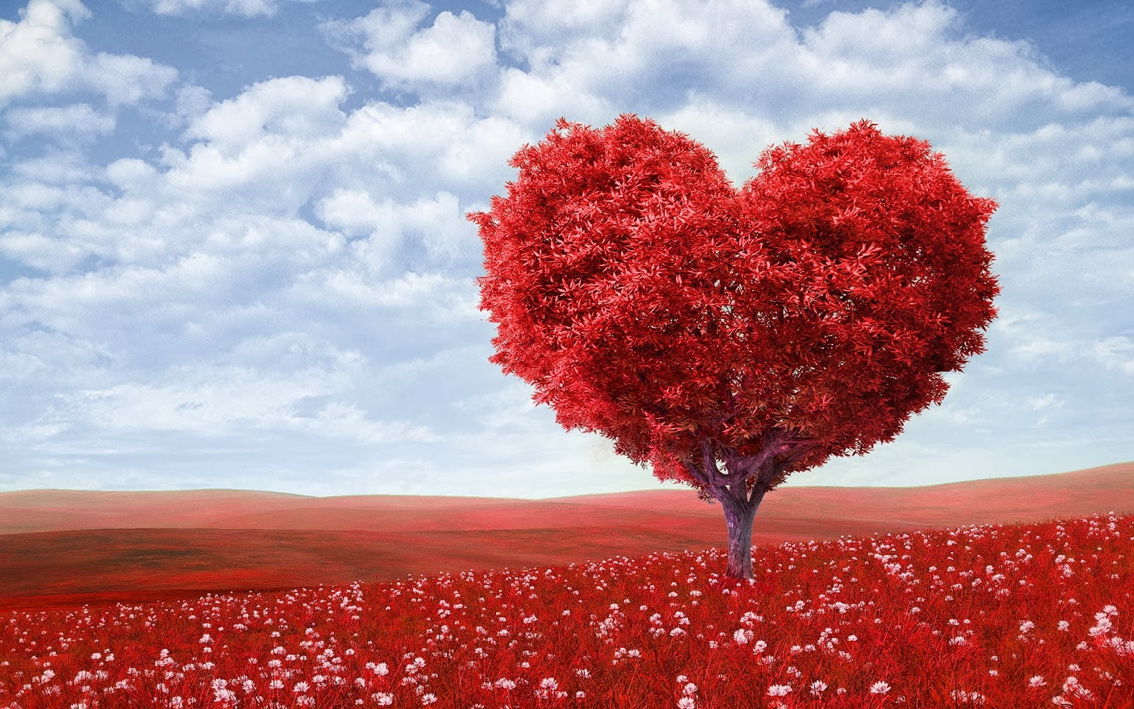 Beautiful Heart Tree for Your Lover