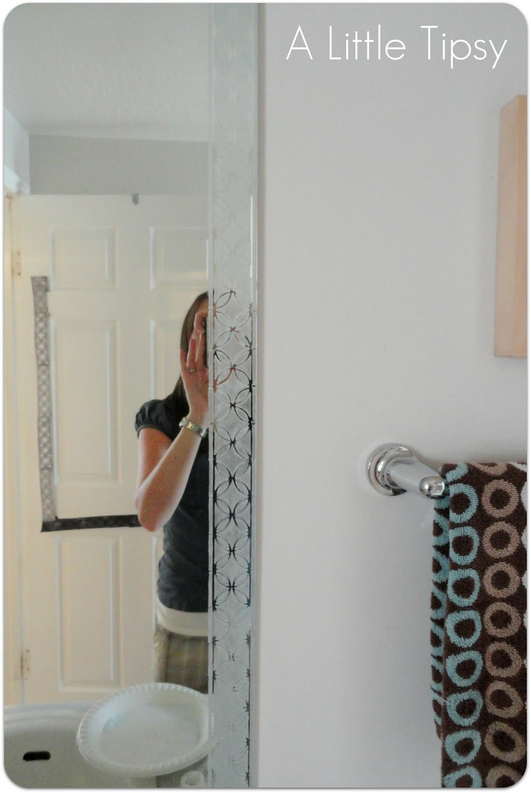 Frosted Mirror with Martha Stewart Paint - A Little Tipsy