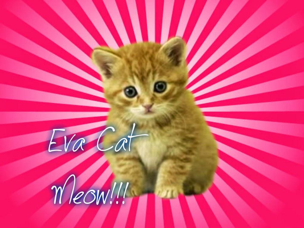 EvaCat ¡Meow!