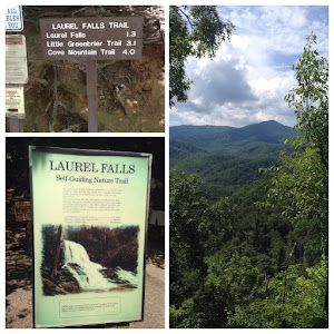 Laurel Falls Hike