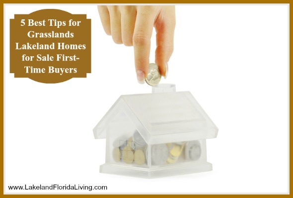 Buying a Grasslands Lakeland FL real estate for the first time can be a daunting experience, these tips ensures a smoother process for you.