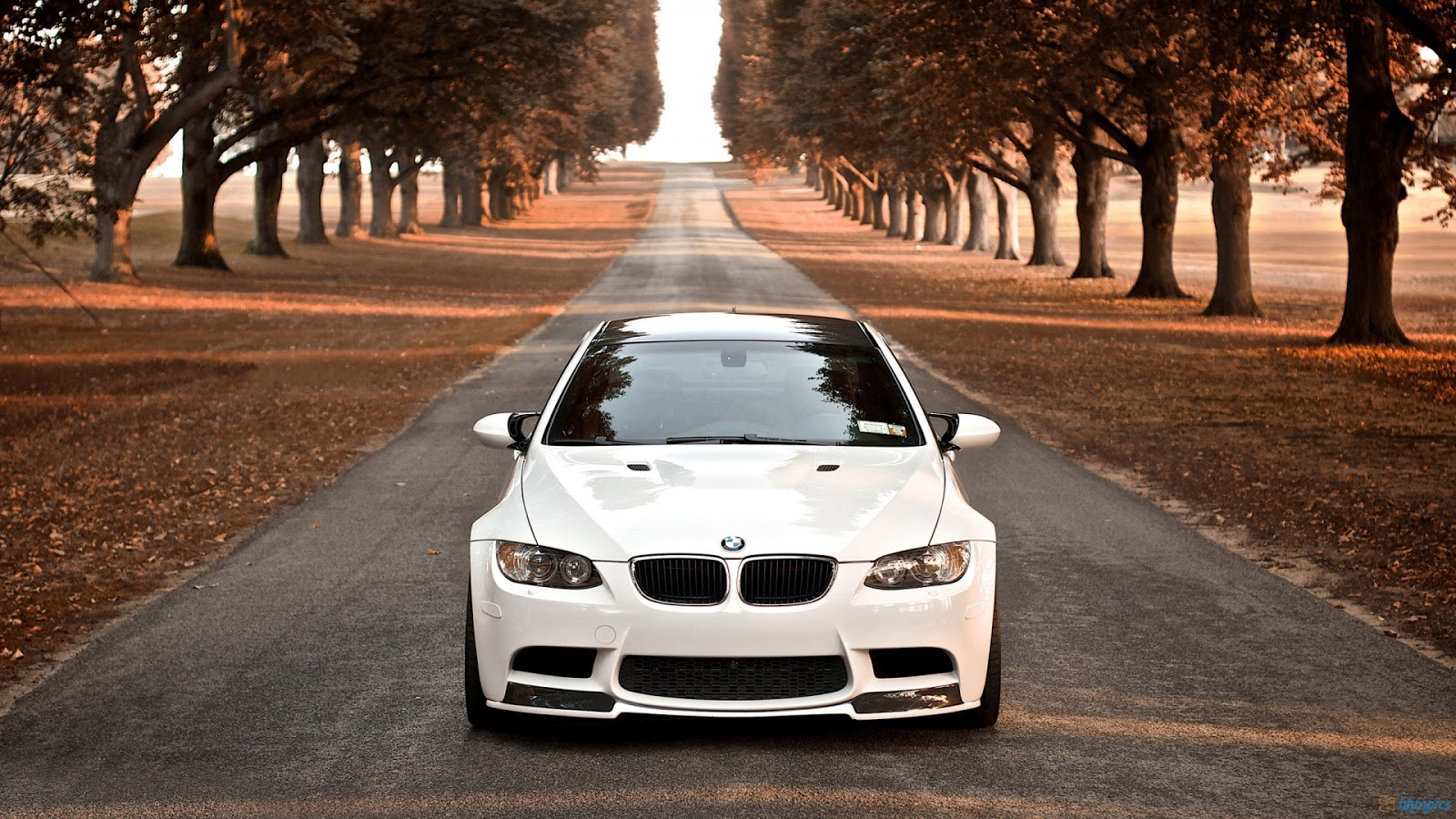 Wallpaper Bmw Wallpaper 1920x1080