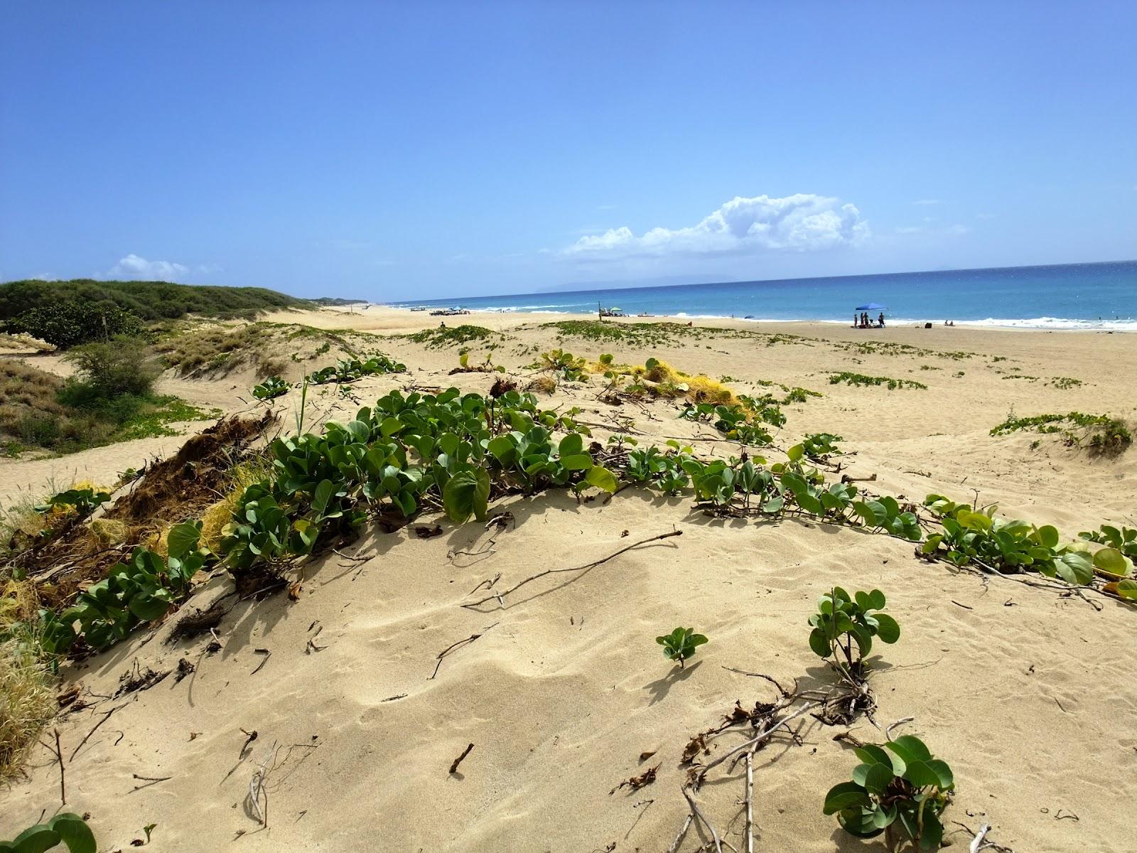 Tout à l'ouest, presqu'au bout de la route principale, une piste de ...: califorus.blogspot.fr/2012/07/hawaii-kauai.html#!