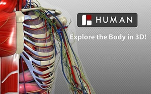 Explore the Body in 3D!