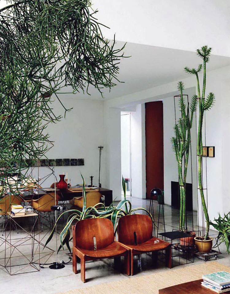 Living Room Jungle living room urban jungle | furniplan - furniture planning