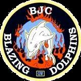 Blazing Dolphins