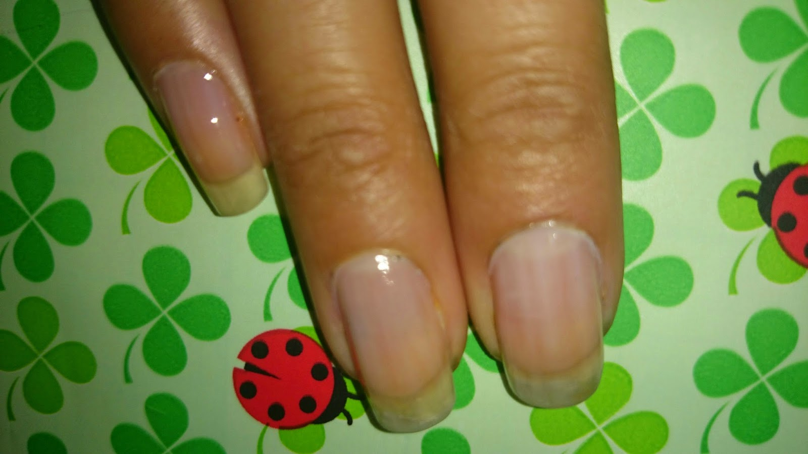May Nails: Terrorificamente monas