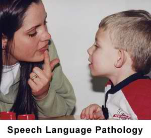 Speech-Language Pathologists & Audiologists [NOC 3141]