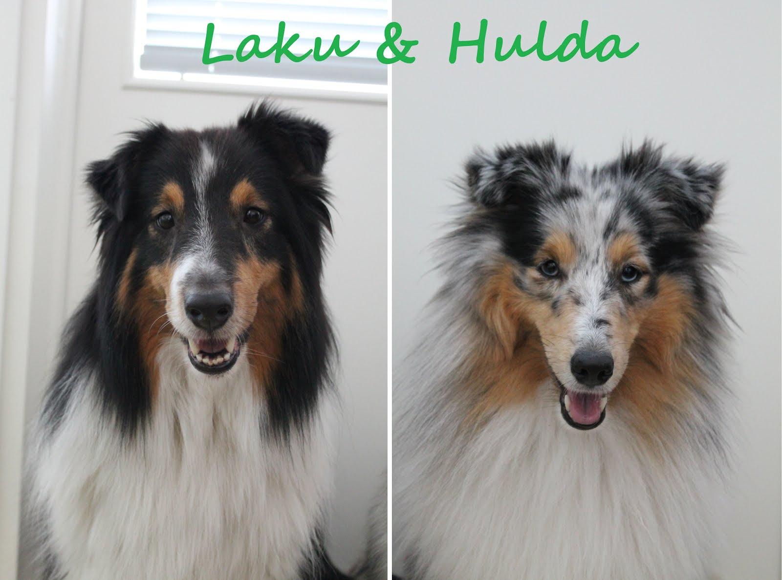 Laku & Hulda