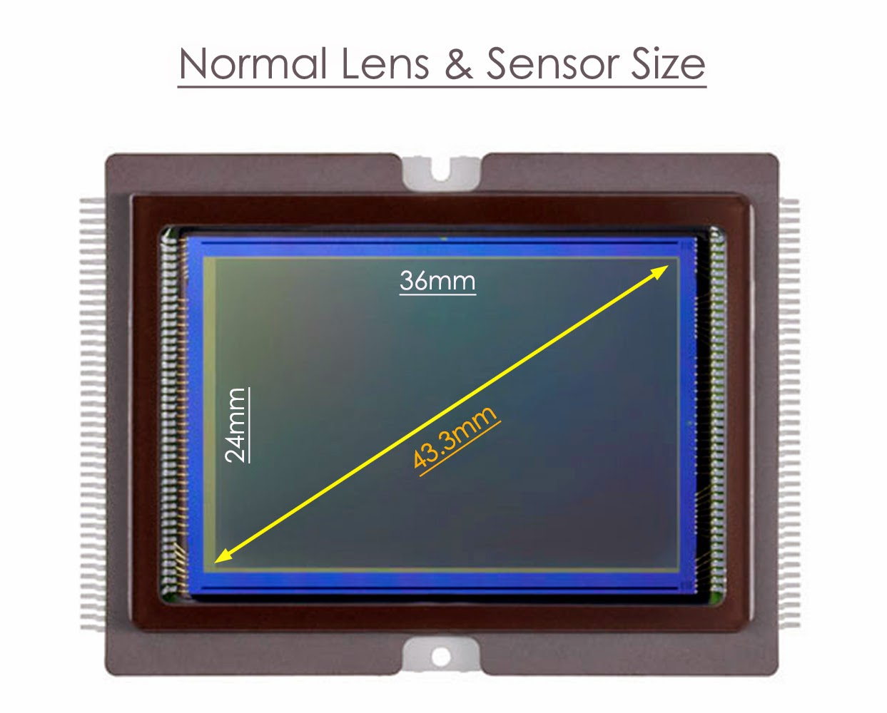 Normal Lens and Sensor Size