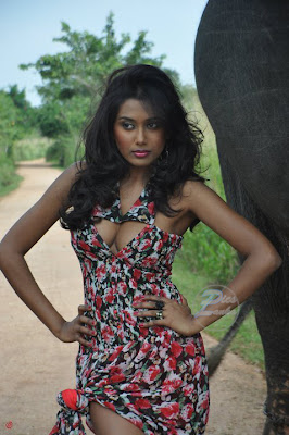 Sri Lankan Hot Deepthika Jayakodi Picture Download