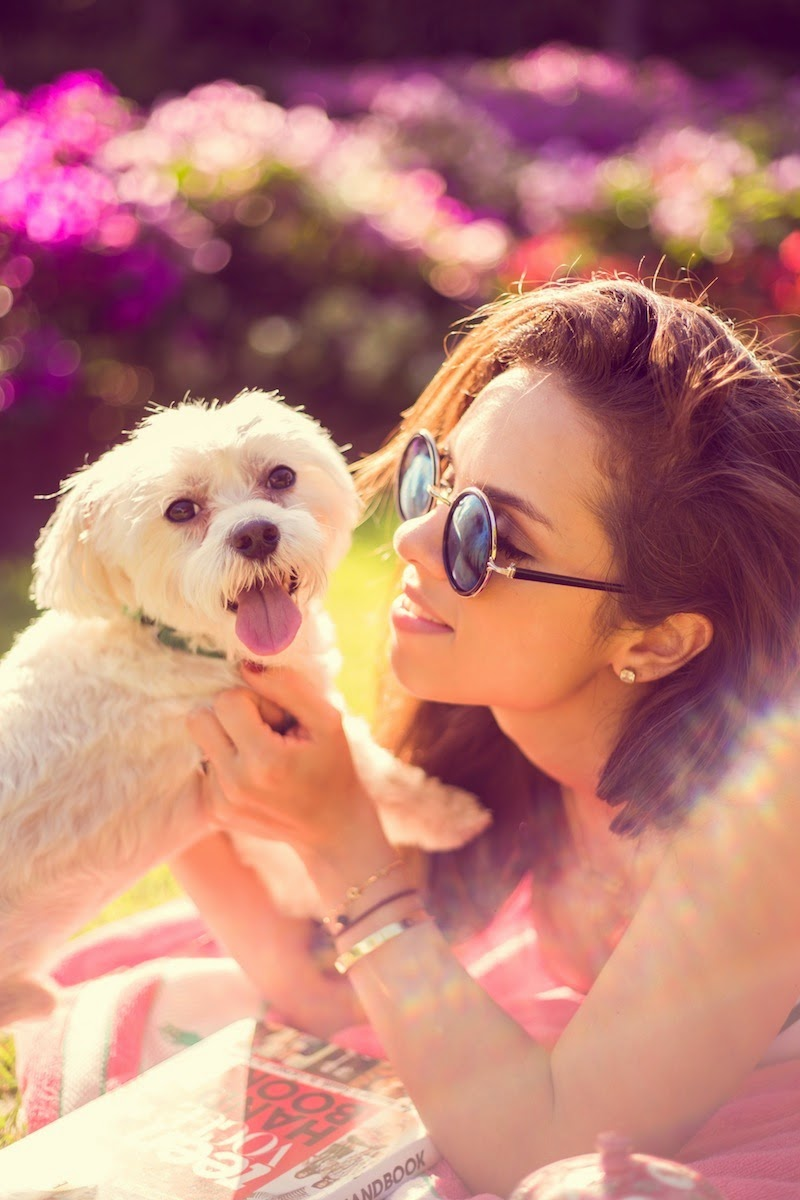 fashion, miami fashion, miami fashion blogger, fashion bloggers, daniela ramirez, nany's klozet, bikini, pool fashion, chiki, maltese puppy, mirror sunglasses, puerto rico