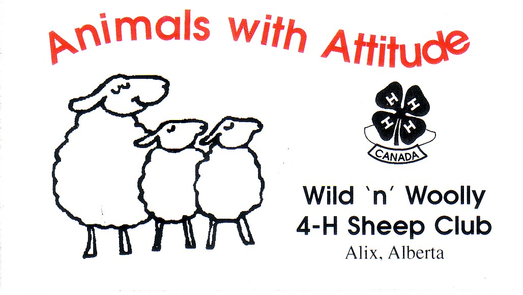 n woolly 4h sheep club of