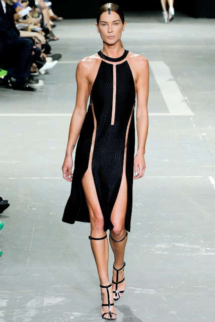 Alexander Wang's Spring/Summer 2013 Revealing Dress