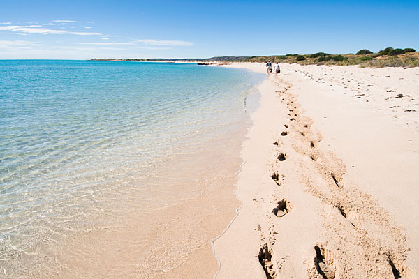 Money Australia Famous Beaches In Australia