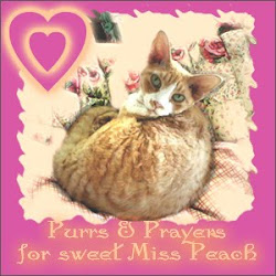 Sweet Miss Peach