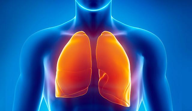 membersihkan paru-paru dalam 2 hari