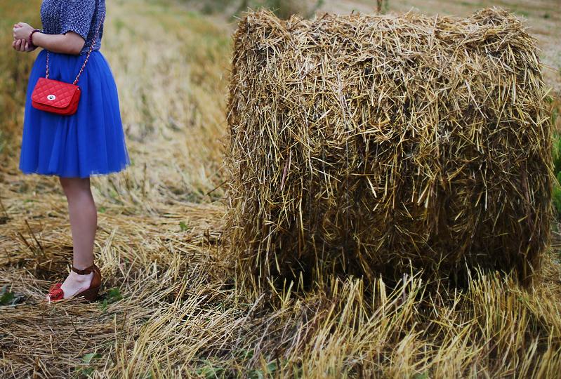 http://annaonopiuk.blogspot.com/2014/08/wiejskie-klimaty-nie-tym-razem-cos.html