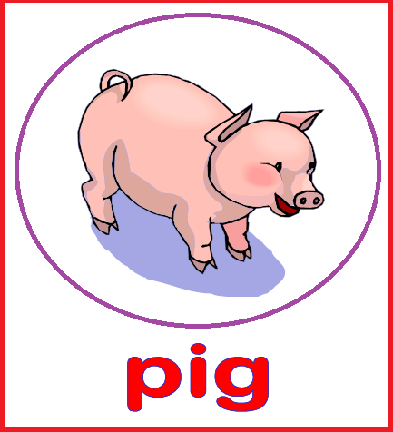 Kindergarten Worksheets: Animal Flashcards - Pig