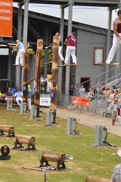 woodchop royal easter show sydney