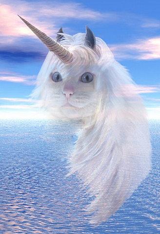 http://2.bp.blogspot.com/-9N1HystoPV0/UoGBKt5BYyI/AAAAAAAAEac/tqzgPzWf1wc/s1600/unicorn+cat.jpg