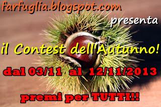 http://farfuglia.blogspot.it/2013/10/contest-dellautunno.html