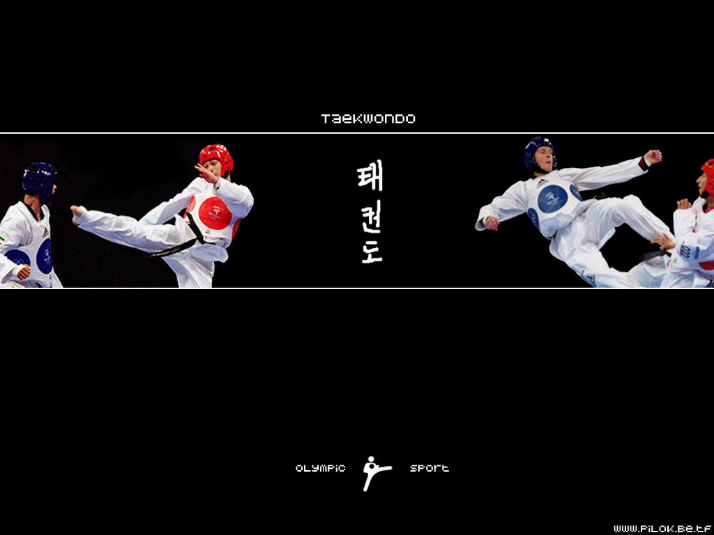 http://2.bp.blogspot.com/-9NArBsDu1f0/T4RJivunbPI/AAAAAAAAACs/mL7M3OTK2LM/s1600/taekwondo_1.jpg