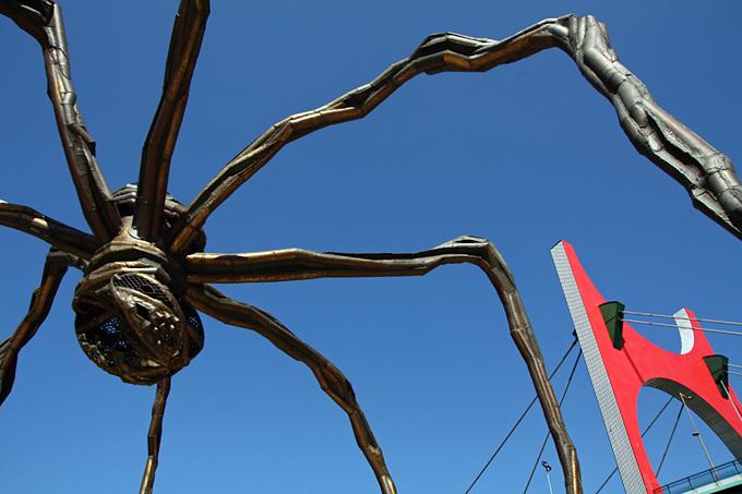 Pormenor do corpo da Aranha e das suas pernas, contra céu azul