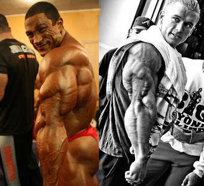 Roelly Winklaar vs Lee Priest