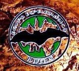 Grupo Espeleológico Iliberis. Pincha en el logo para acceder a su Web.