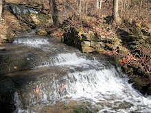 Leonard Springs Falls