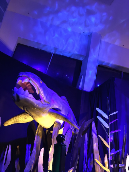 Science Centre, Monsters of the Sea,