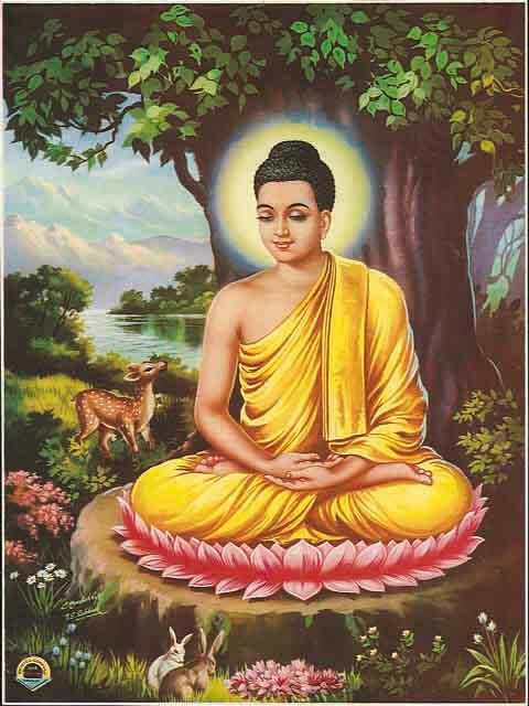 Room 5 World History: Buddhism 101