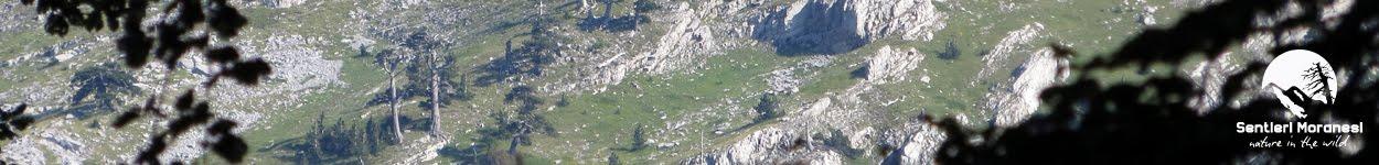 Monte Pollino dalla cresta Nord