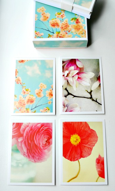 flowers in bloom note cards from graphique