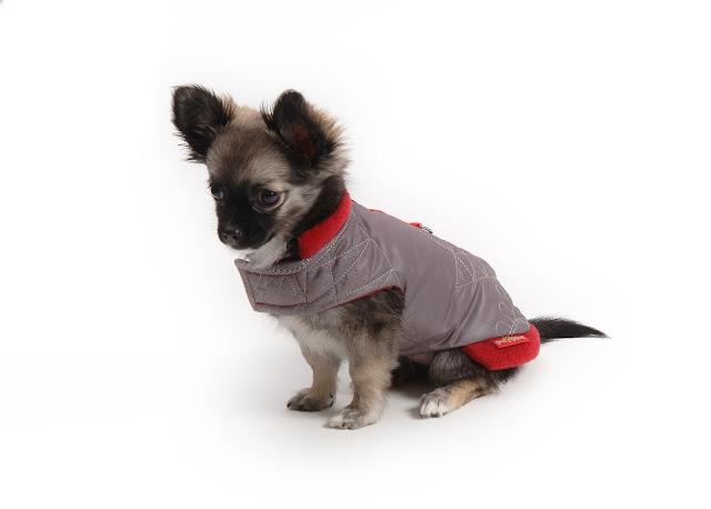Glorinka a první obleček - zimní vesta