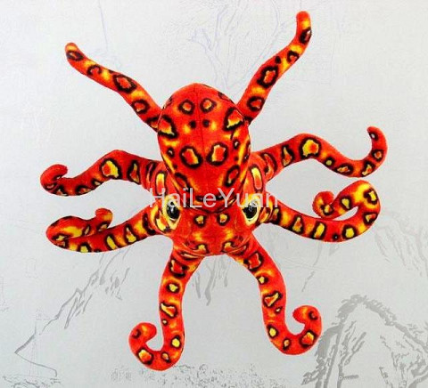 豹紋章魚1