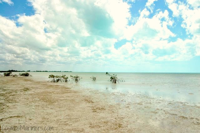 Tidal Flats and Deserted Beaches, Andros Island, Bahamas | CosmosMariners.com