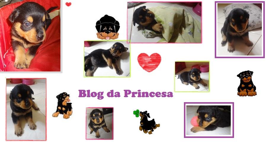 Blog da Princesa