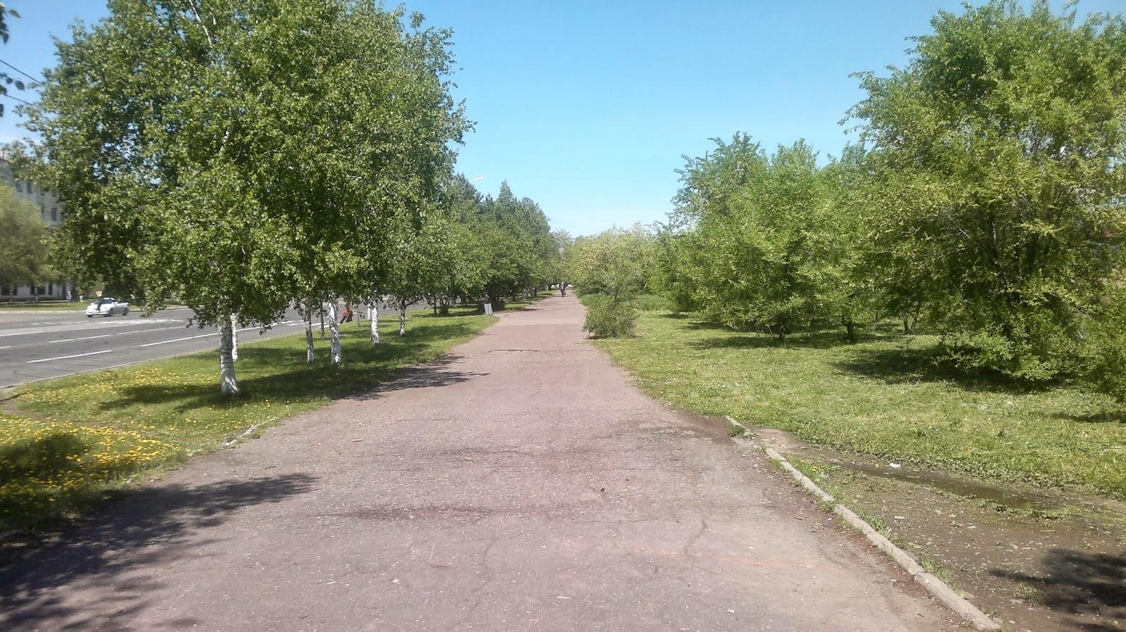 Зеленая аллея на Проспекте Первостроителей в Комсомольске на Амуре